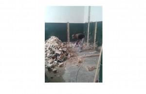 remodelação de casa de banho paredes verde